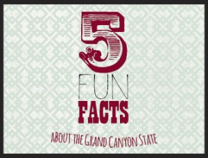 5 Fun Facts about Arizona