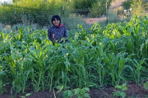 Cultivating Community And Self-Reliance In Cibecue
