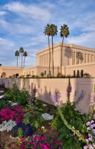 Beautiful gardens and stately palm trees greet guests on the southwest side of the Mesa Arizona Temple. Photo courtesy of The Church of Jesus Christ of Latter-day Saints – Media Room
