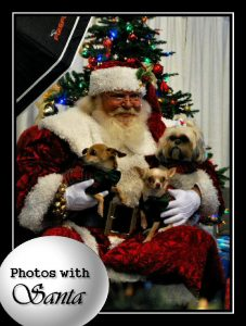 Pet Pictures with Santa Photo by: HolidayPetFestival.com