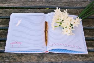 There are a wide variety of journals available to suit every purpose Photo courtesy of Pixabay.