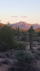 Superstition Mountains' Flatiron as it rises above the Valley seen at sunset from Usery Mountain Regional Park. Photo courtesy of Emily Boyle